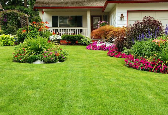 Se dictar en r o branco curso de jardiner a y paisajismo for Jardineria y paisajismo fotos